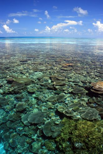 View across a shallow water coral reef around Theluveligaa Island