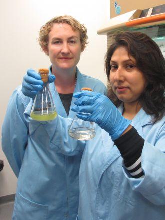 Dr Sasha Tetu and Indrani Sarker