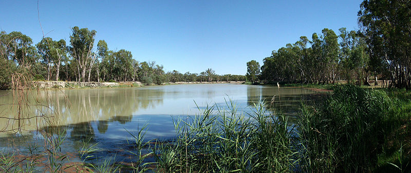 Murray River Loxton credit Dwayne Madden from Loxton, Australia
