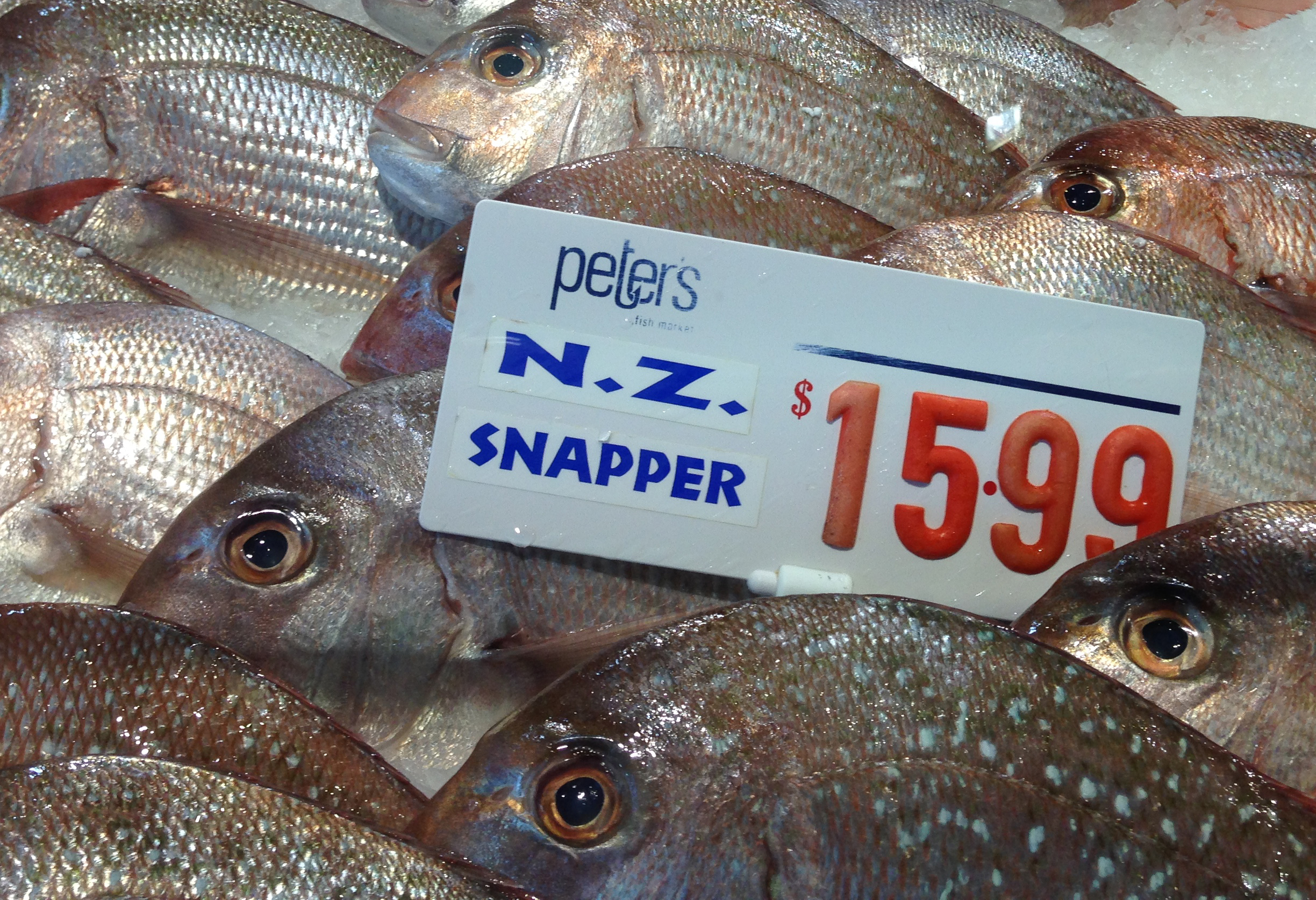 Credit: Reg Watson. NZ snapper for sale in Sydney Fish Market