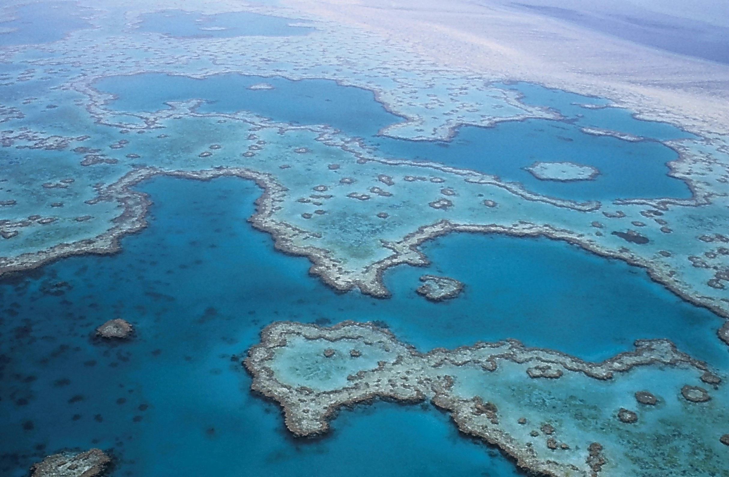 Great Barrier Reef. Source: Pixabay