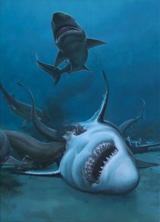 A prehistoric shark feast