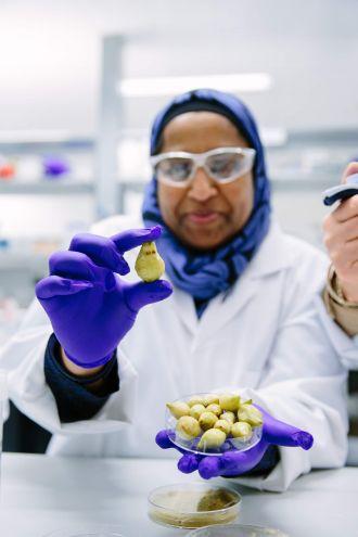 UQ QAAFI Dr Yasmina Sultanbawa