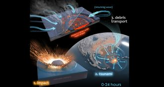 New insights into how microbial life was quickly re-established following the mass extinction of the dinosaurs have been detailed for the first time by Curtin University-led research. The research, published in Geology, analysed biomarkers, also known as molecular fossils, found in drill core rock samples from the centre of the Chicxulub crater located in deep-sea waters of the Gulf of Mexico.