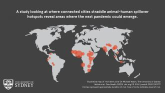An international team of human- and animal health experts has incorporated environmental, social and economic considerations – including air transit centrality, to identify key areas at risk of leading to the next pandemic. The paper led by the University of Sydney has published in the Elsevier journal One Health.