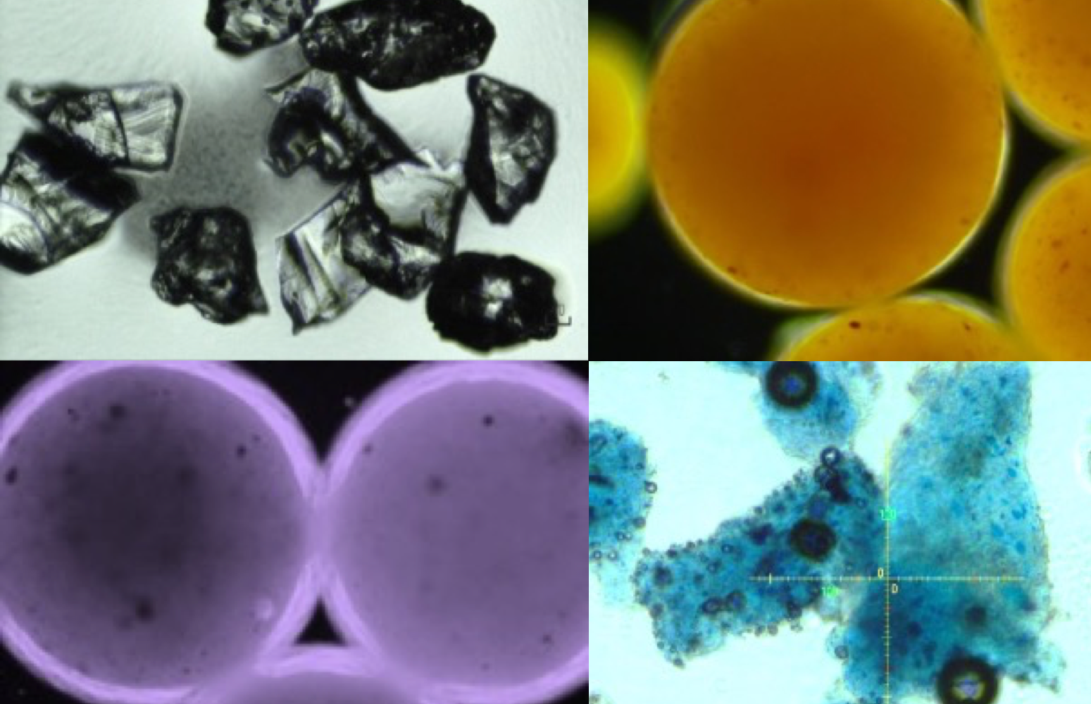 Microplastic debris in cosmetics under optical microscopy. Photo Credit: Dr. Xiaoguang Duan