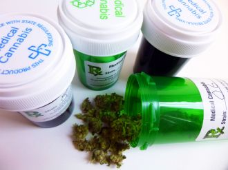 The legislative changes to allow medicinal cannabis in New Zealand are outpacing the medical and legal frameworks doctors work in, according to researchers writing in the New Zealand Medical Journal. They say most cannabis-based products do not have enough information about safety or how they are made to be licensed as medicines here, which could mean doctors will be conflicted between what their patients want and what they can confidently prescribe.