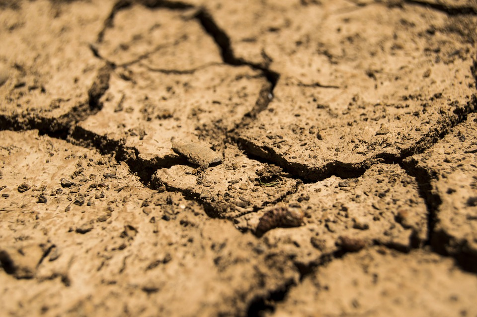 drought-780088_960_720.jpg