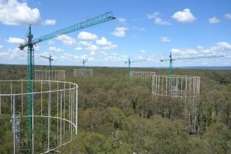 Researchers at Western Sydney University's EucFACE (Eucalyptus Free Air CO2 Enrichment) experiment have found new evidence of limitations in the capacity of mature forests to translate rising atmospheric CO2 concentrations into additional plant growth and carbon storage.